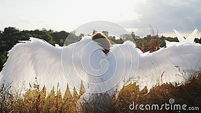 L'angelo bianco sull'erba secca di una collina stock footage
