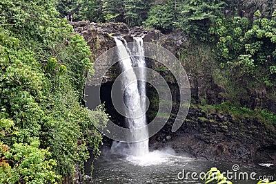 L arc-en-ciel tombe (grande île, Hawaï)
