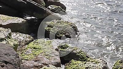 L'eau et roches banque de vidéos