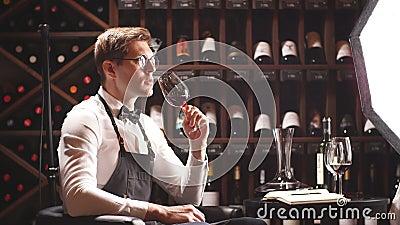 L'esperto nel vino tiene un bicchiere di vino, sguardi alla tinta ed odora il sapore, degustating archivi video