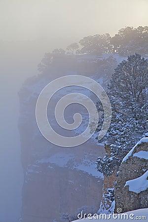 L hiver de canyon grand