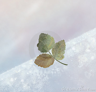 L hiver de lame