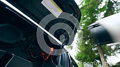L'homme enlève le câble de remplissage d'une prise de voiture électrique Remplissage de la voiture ?lectrique banque de vidéos