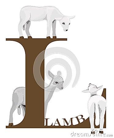 L (lamb)