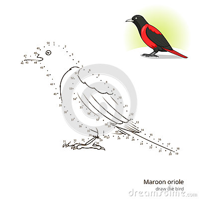 L 39 oiseau marron de loriot apprennent dessiner le vecteur for Oiseau marron