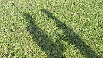 L'ombra delle coppie su erba stock footage