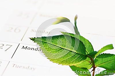 L ordre du jour vert de la compagnie (CSR)