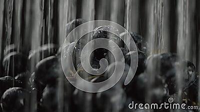 L'uva, l'acqua a versa dalla cima in molti getti, in mezzo alla video fermata dell'acqua, primo piano stock footage