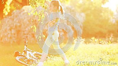 La bambina felice sta ballando sul prato al giorno sunshiny luminoso video d archivio
