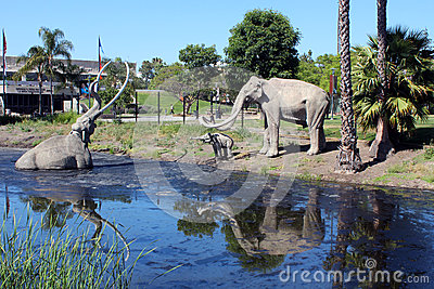 La Brea Tar Pits Editorial Photo