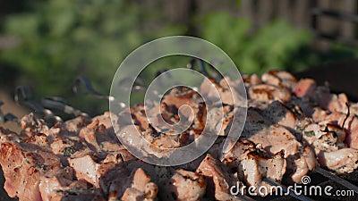 La carne en los pinchos asa en cierre al aire libre de la parrilla de la barbacoa del PDA encima del shashlik metrajes