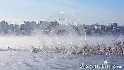 La ciudad en medio del río brumoso almacen de metraje de vídeo