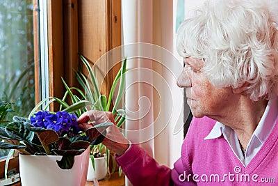 La femme âgée prend soin des fleurs