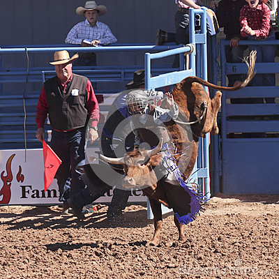 A La Fiesta De Los Vaqueros Junior Rodeo