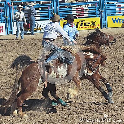 A La Fiesta De Los Vaqueros, Tucson, Arizona