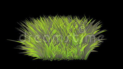 la fleur 4k luxuriante laisse à des cultures des arbustes élevage d'herbe d'usine de buissons illustration de vecteur