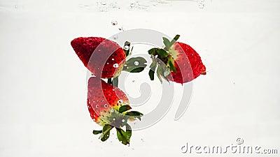 La fresa roja cae en el agua con burbujas. Vídeo en cámara lenta. Frutas en un fondo blanco aislado metrajes
