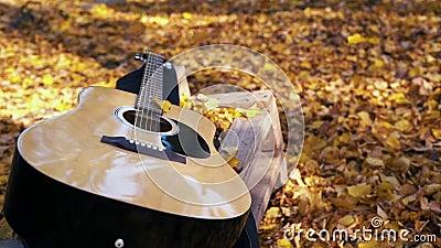 La guitarra miente en el bosque en las hojas amarillas Caída de las hojas del amarillo en la guitarra Bosque otoñal metrajes