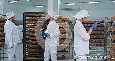 La industria panadería grandes videos llevando a tres panaderos charlando entre ellos tonalidades bonitas pandillas con uniforme  almacen de metraje de vídeo