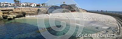 La Jolla Childrens Pool