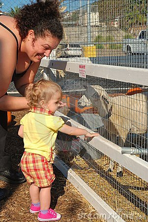 La madre e la figlia alimentano le pecore