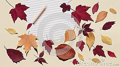 La matita sta rotolando su un foglio di carta allineato e si sta fermando Sfondo beige con foglie d'autunno colorate Luce del sol video d archivio