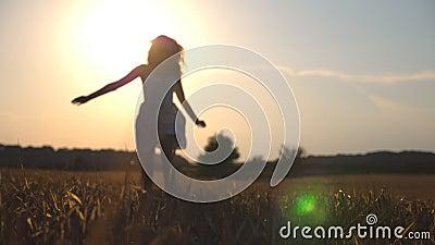 La muchacha hermosa está corriendo a lo largo de campo de trigo en la puesta del sol Mujer joven que activa en el prado y la libe almacen de video