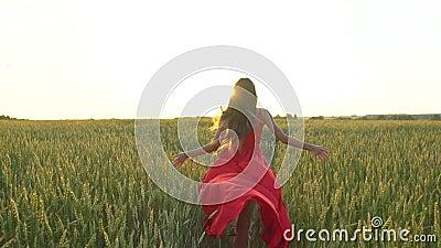 La mujer hermosa joven feliz en vestido rojo arma el funcionamiento aumentado en campo de trigo en el verano de la puesta del sol almacen de metraje de vídeo