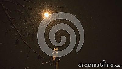 La neve cade molto alla notte bassa in profondità del campo video d archivio