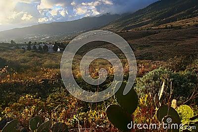 La Palma island landscape