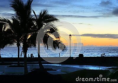 La Palma shore