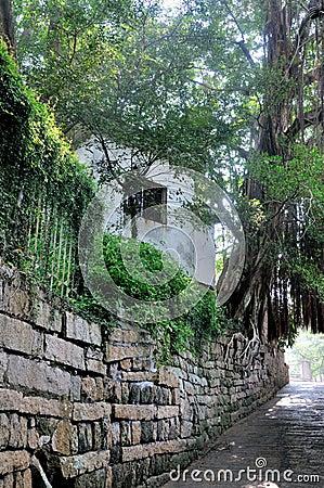 La pared de piedra extiende, y pequeña vertiente