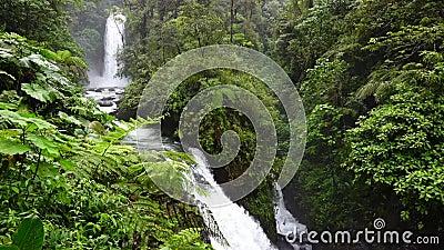 La Paz Falls em Costa Rica vídeos de arquivo