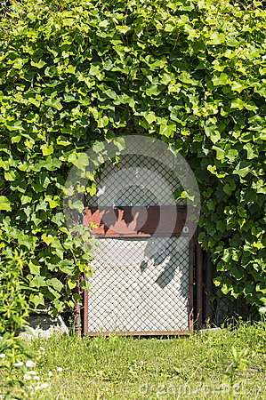 La porte au jardin secret photo stock image 56475679 for Au jardin secret de tadine