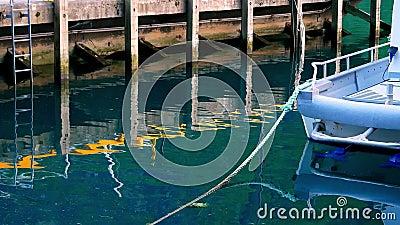La réflexion sur la jetée en bois avec l'échelle et le petit bateau attaché à la corde est vue dans les eaux calmes de ce clip banque de vidéos