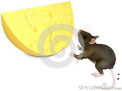 Ratón y chese