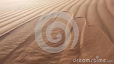 La sabbia del deserto scorre come l'acqua al Nord Africa Bechar Algeria, deserto sabbioso di Taghit stock footage