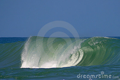La Salsa Brava Wave