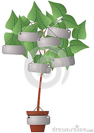 Label plant
