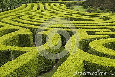 Laberinto ingl s del jard n del pa s foto de archivo libre for Jardin laberinto