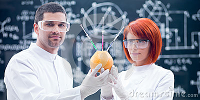 Laboratory  studies on grapefruit