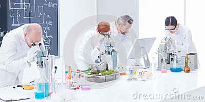 Laboratory under microscope analysis