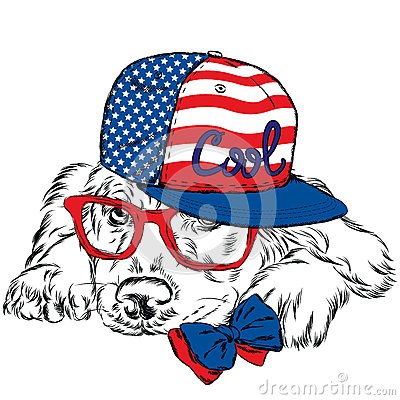 Labrador wearing a cap and a tie. Pedigree dog. Vector dog. Postcard with the Labrador. Hipster. Vector Illustration