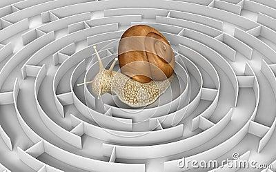 Labyrint till snigeln