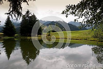 Lac Швейцария joncs des