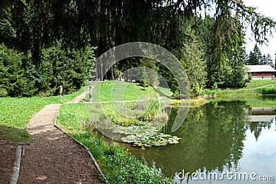 Lac Des Joncs in Switzerland