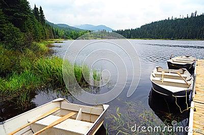 Lac Piché - Forêt Montmorency
