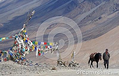 Ladakhi man with horse Editorial Photography