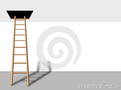 Ladder into loft