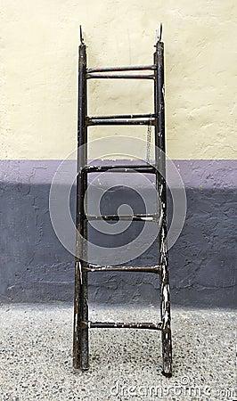 Ladder painter